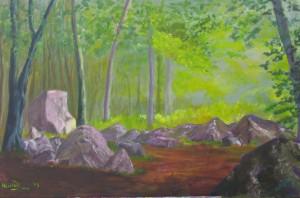 Stenen in het bos