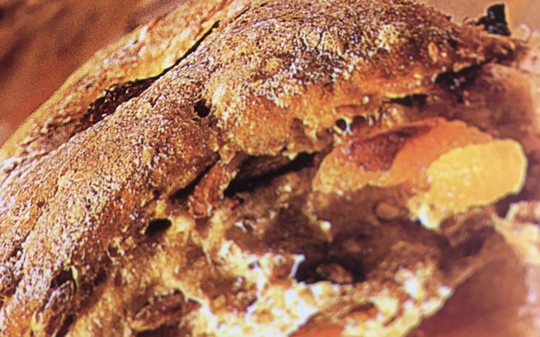 Muesli-Noten-Abrikozenbrood