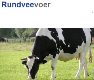 rundveevoer-300x255kopie